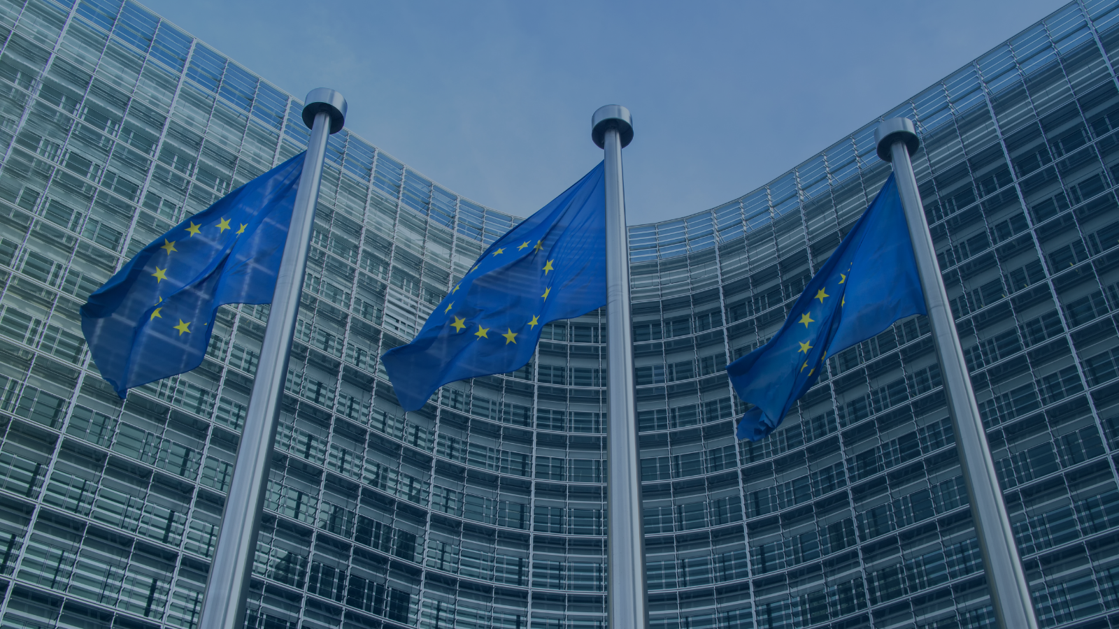 Position Paper: CECIMO's Reaction to the Renewed EU Safeguard Measures